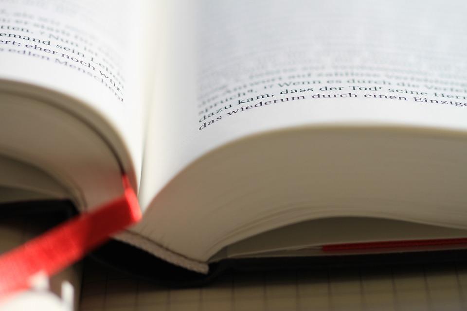 versos-biblicos-para-que-tus-hijos-aprecien-la-disciplina