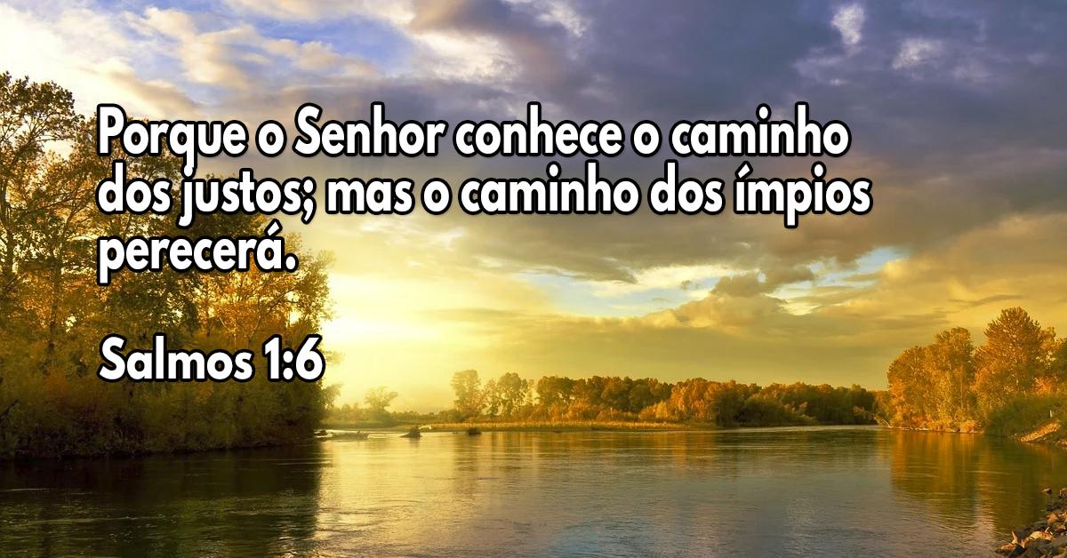 Porque o Senhor conhece o caminho dos justos; mas o caminho dos ímpios perecerá