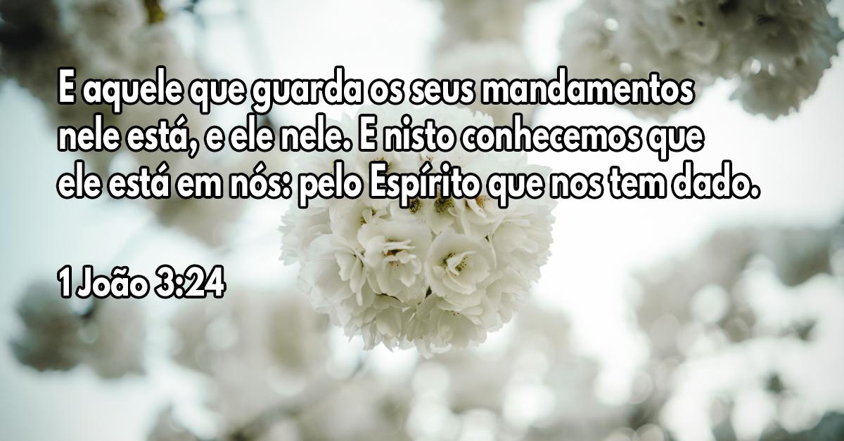 E aquele que guarda os seus mandamentos nele está, e ele nele. E nisto conhecemos que ele está em nós- pelo Espírito que nos tem dado