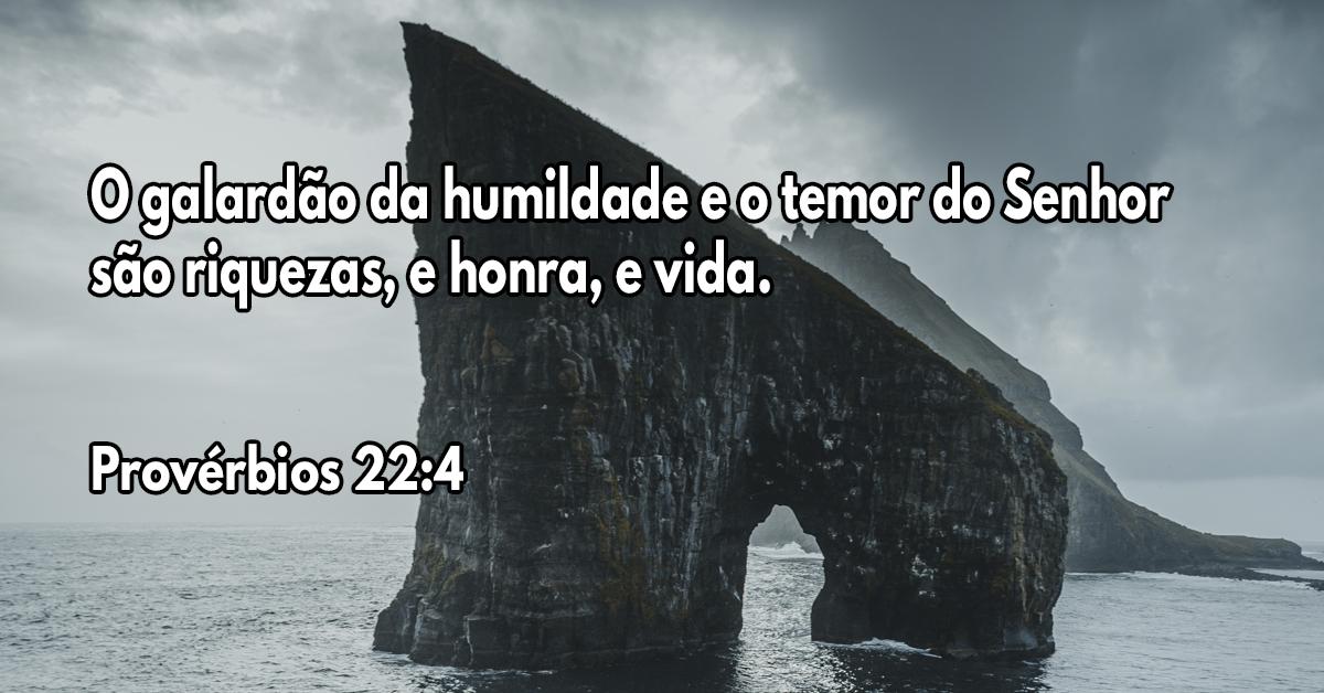 O galardão da humildade e o temor do Senhor são riquezas, e honra, e vida