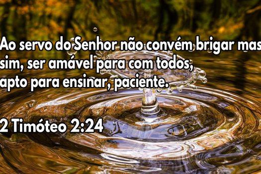 O servo do Senhor deve ser gentil com todos