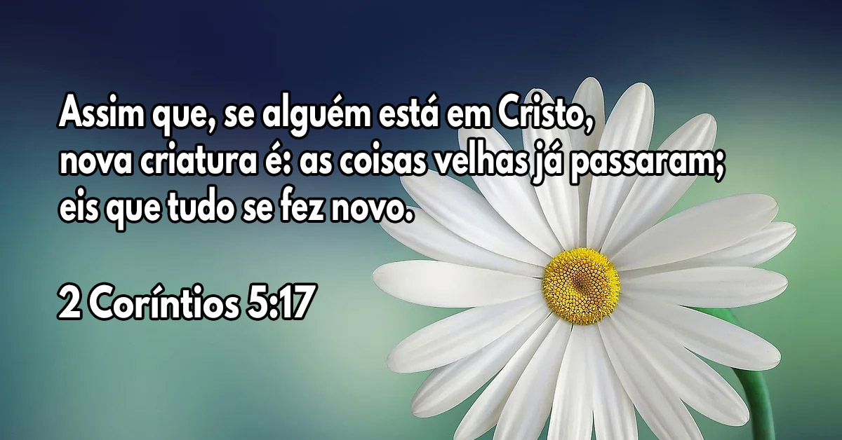 Uma nova vida em Cristo Jesus