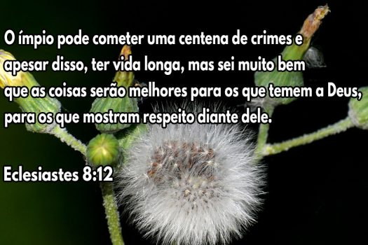 Aqueles que temem a Deus ficarão bem